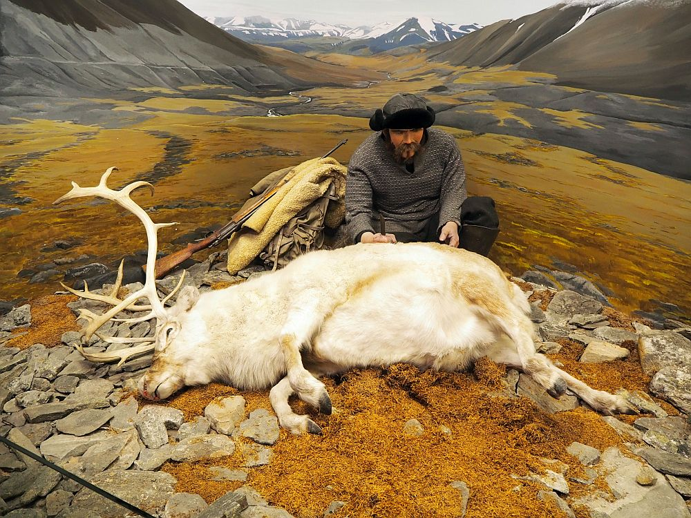 A white reindeer with large antlers lies dead on its side, its belly facing the camera. A man squats behind it, gripping a knife in the reindeer's back. He wears a grey coat and a fur-lined hat. Beside him is a pile of his things: a backpack, a jacket and a rifle. On the wall behind them a painting makes it seem like they are in the middle of a beautiful valley with mountains on either side and snow-covered mountains in the distance behind. The ground is covered with orangish moss.