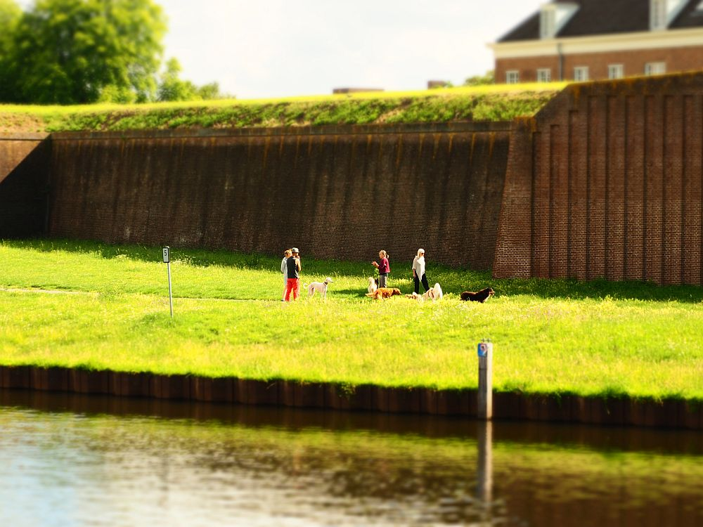 A large, plain brick wall, that appears to be a retaining wall, judging by the earth covered with grass at the top. In front of it, on a grassy strip of land, a group of 5 people stand with their dogs on leashes. In the foreground, water (the river).