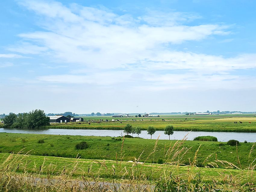 A very flat landscape: canal in the middle distance crossing from left to right. Beyond that, some farm fields with livestock grazing, some farm buildings.