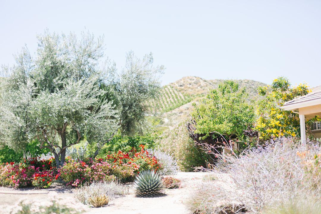 temecula landscape