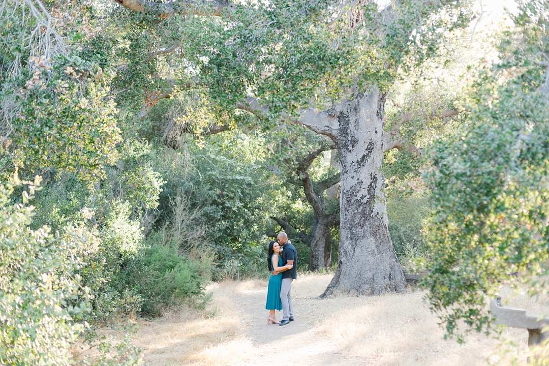 malibu engagement photos solstice canyon couple under tree