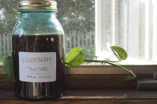 How to make elderberry tincture | Clean : : the LuSa Organics Blog