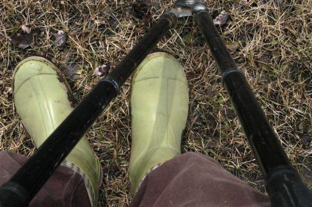 Spring. | Clean. : : the LuSa Organics Blog