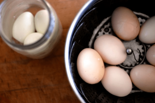 How to peel fresh eggs - Clean. www.lusaorganics.typepad.com