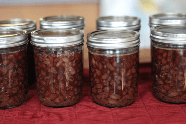 How to pressure can dry beans : : www.lusaorganics.typepad.com : : Clean