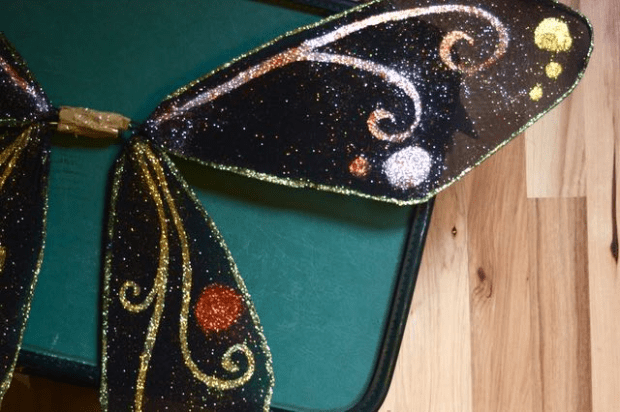 How to make gorgeous fairy wings in under two hours!