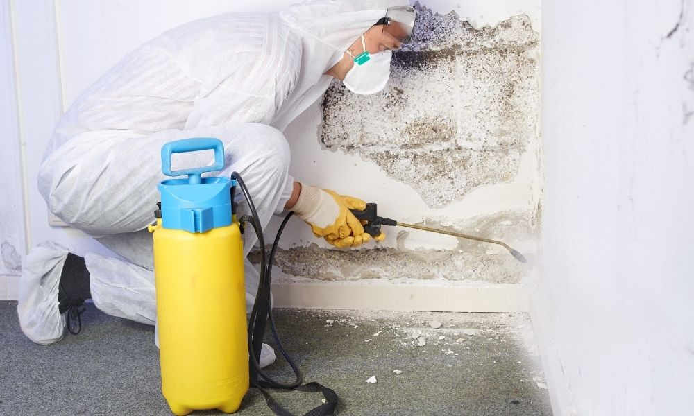 The Most Important Repairs To Make Before Selling Your Home