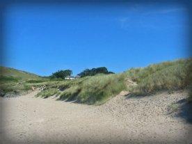 Sand Dunes.