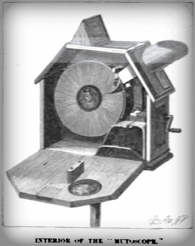Mutoscope Interior. Imge: Wikipedia.