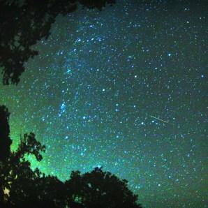 Perseid Meteor, 2007. Image: Brocken Inaglory.