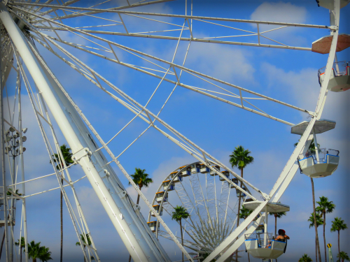 Ferris Wheels, Los Angeles County Fair, 2016. Image: Bee Rose.