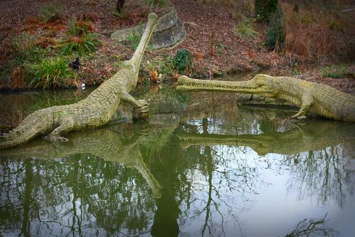 Crystal Palace Dinosaurs--Teleosaurus. Image: FunkMonk.