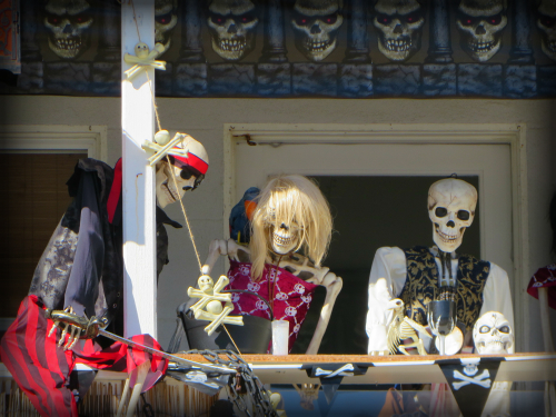 Halloween Visitors, Malibu California. Image: B. Rose.