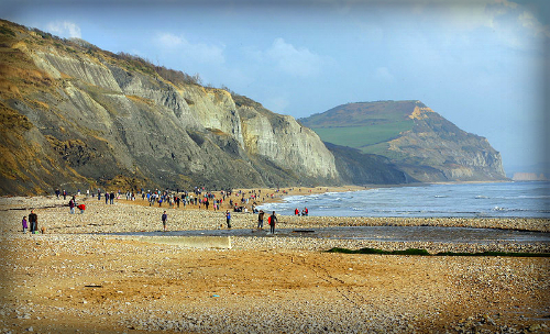Mary Anning's Golden Cap from Charmouth Beach. Image: Kevin Walsh.