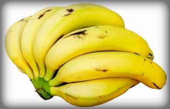 Centennial Exposition 1876, Bananas. Image: Augustus Binu.