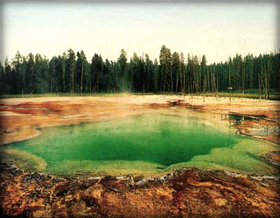 Yellowstone National Park, Thermal Pool, 1902. Image: William Henry Jackson.