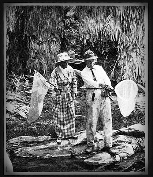 Man and woman in 1900s clothing standing on giant water lily leaves.