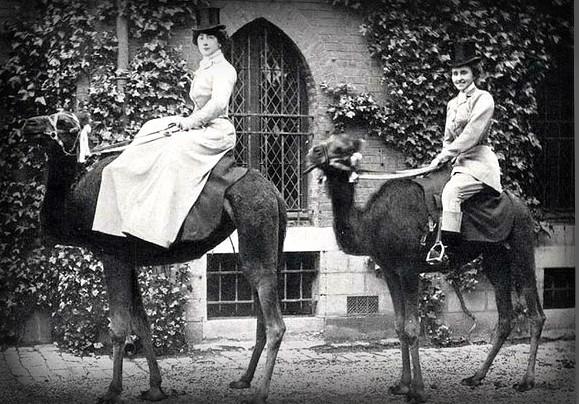 Cirque Franco-Arabe, 1897. Image: Horse Riding In The Amazon.