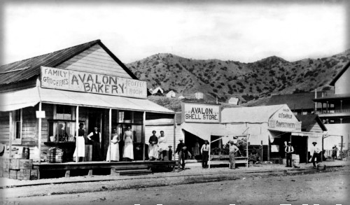 Alonzo Wheeler's Bakery, Shell Store and Shell Store Ice Cream Parlor and Confectionary, 1895. Image: WaterAnd Power.org.