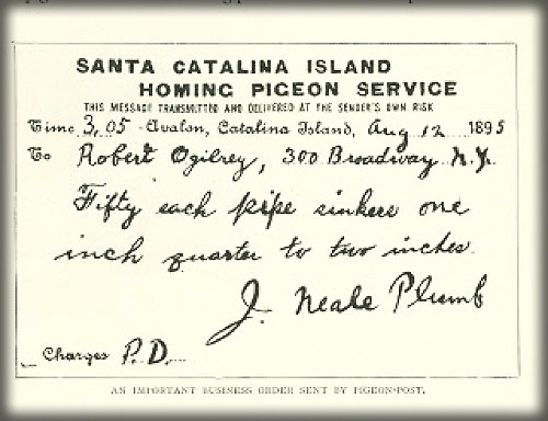 Sample Catalina Pigeon Message, 1895. Image: Islapedia.