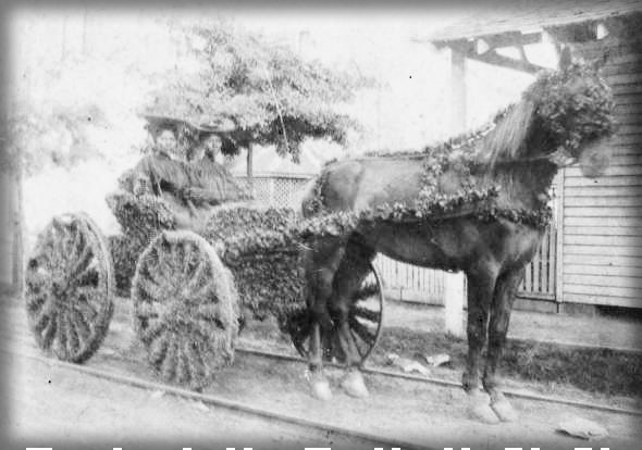 1895-1905 Photo of Two African American Women Wearing Black Dresses in a Decorated Juneteenth Carriage.