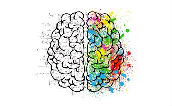 Duas cabeças em uma: a teoria do processo dual