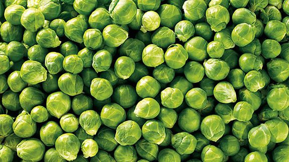 Fresh Whole Brussels Sprouts