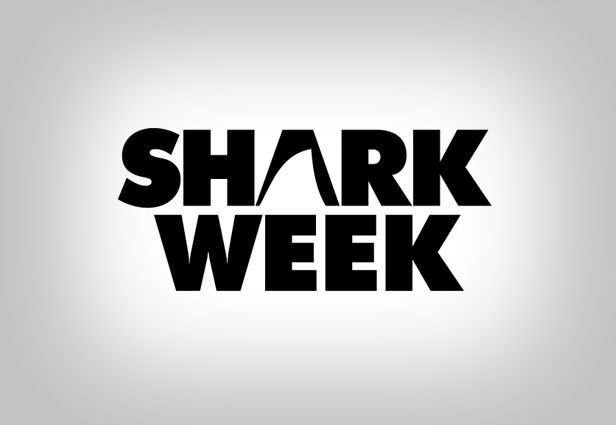 2.%2520discovery%2520channel%2520shark%2520week