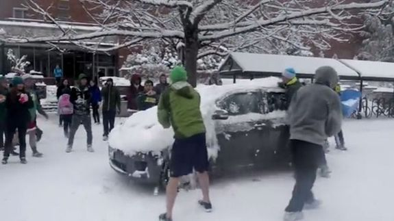 Oregonsnowball