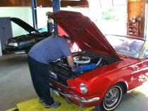 Ol' Mustang