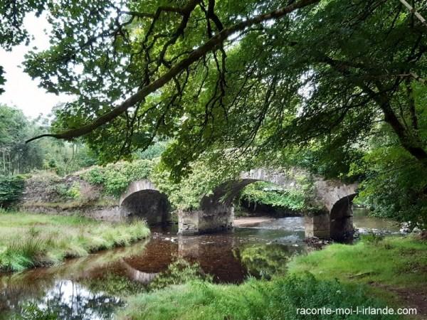 vieux pont, comté de Wicklow, Irlande