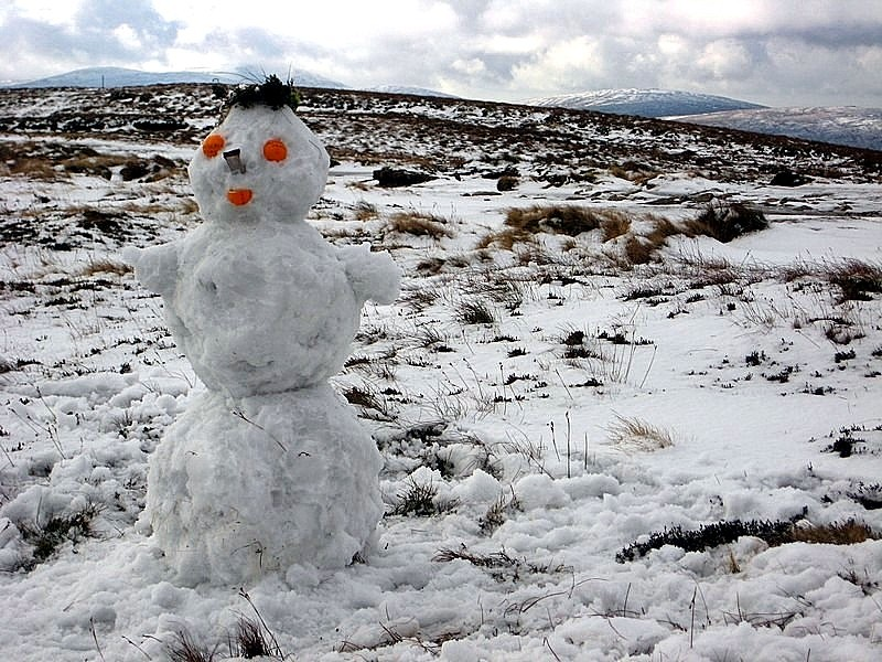 Bonhomme de neige Parc National Wicklow