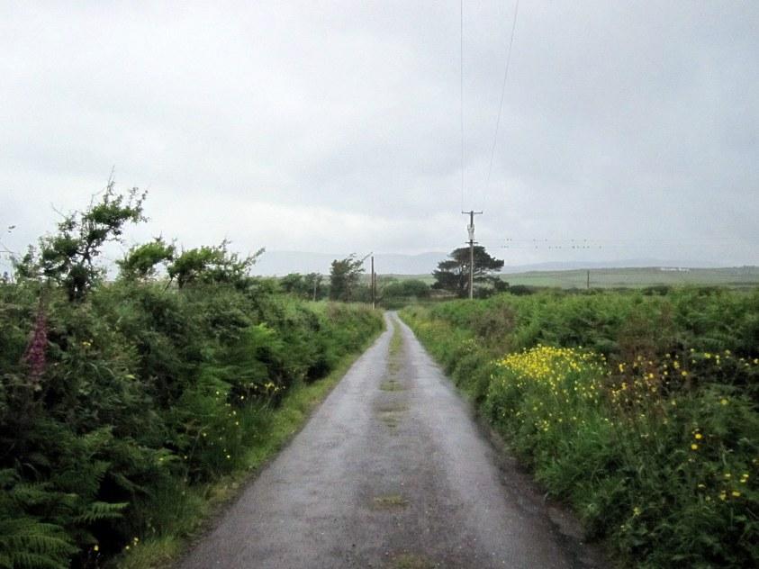 Boreen en Irlande