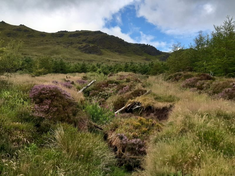 Paysage de montagne comté de Waterford Comeragh Mountains