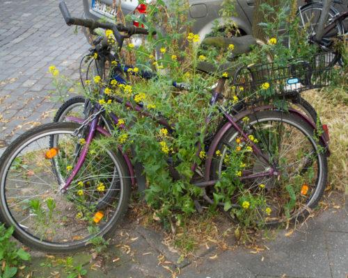 Bicicletas abandonadas em Berlim