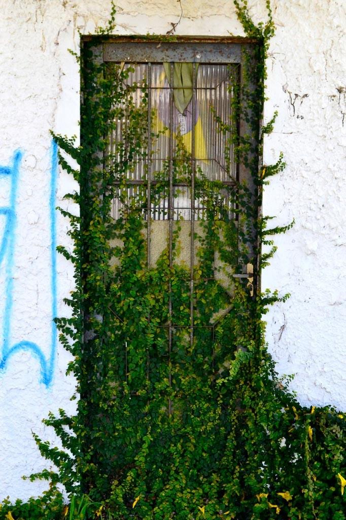 Porta - Curitiba