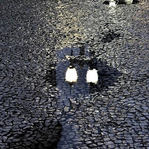 Luz na poça d'água