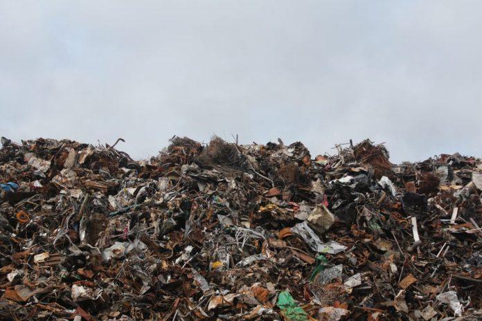 A implantação de Usinas de Recuperação Energética (URE) de resíduos sólidos, a Usina Verde é uma importante aliada do meio ambiente. Foto: Pexels