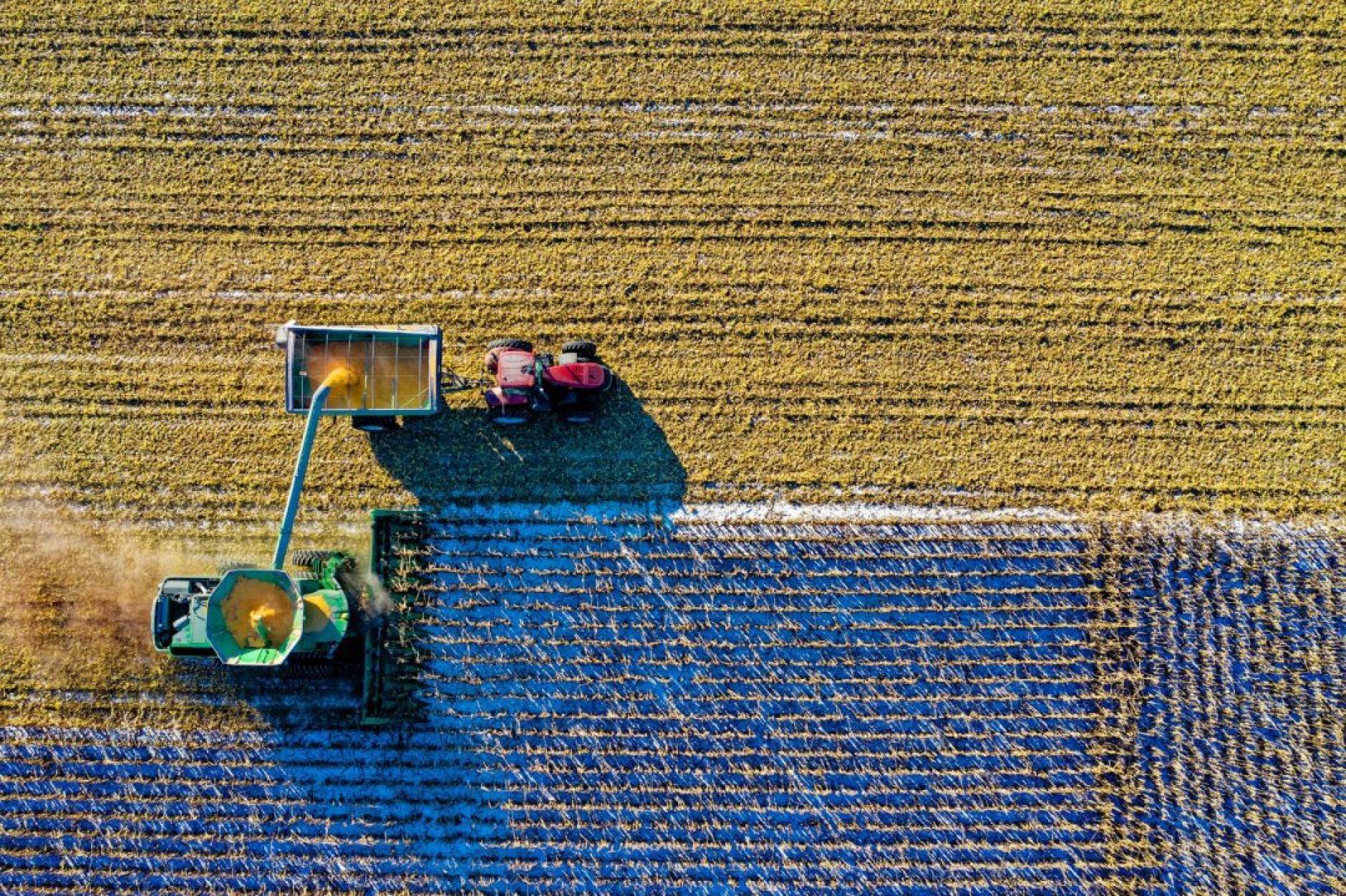 As perspectivas são otimistas e o Brasil já reúne mais de 135 empresas de desenvolvimento tecnológico direcionadas para o aprimoramento do agronegócio. Foto por Tom Fisk em Pexels.com