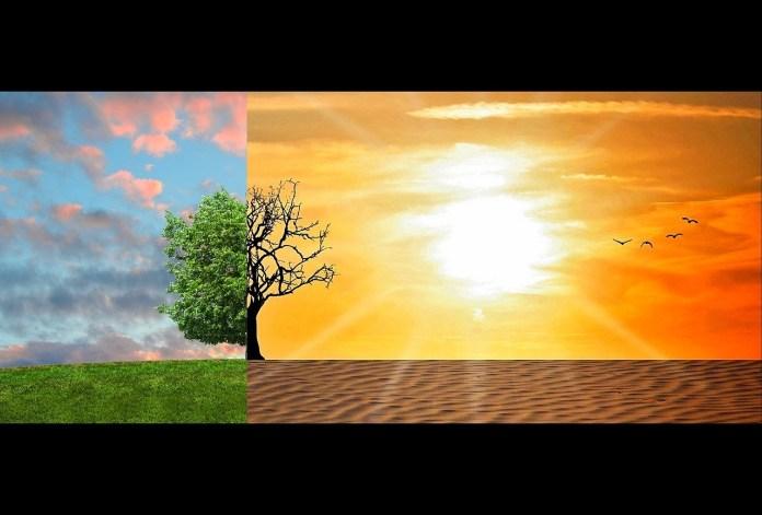 Objetivo do evento foi discutir desafios no combate às mudanças climáticas.Foto:Tumisu/Pixabay.