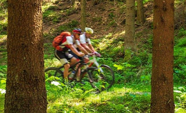 Mountainbiker in flotter Fahrt.