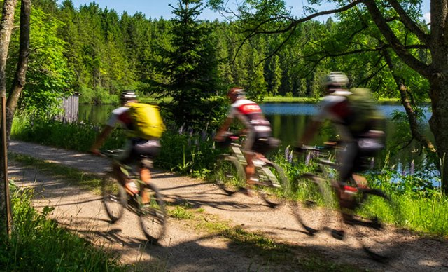 Mountainbiker fahren am Stifterteich vorbei.