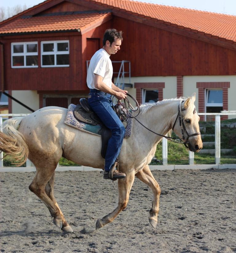 Co potřebuji, abych mohl koně něco naučit?