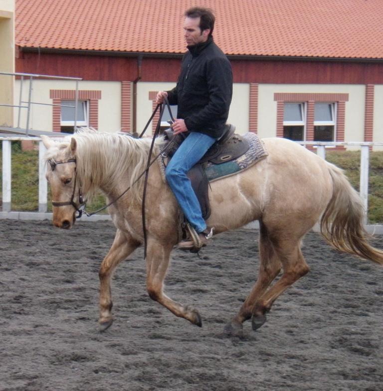 Můj kůň je moc rychlý