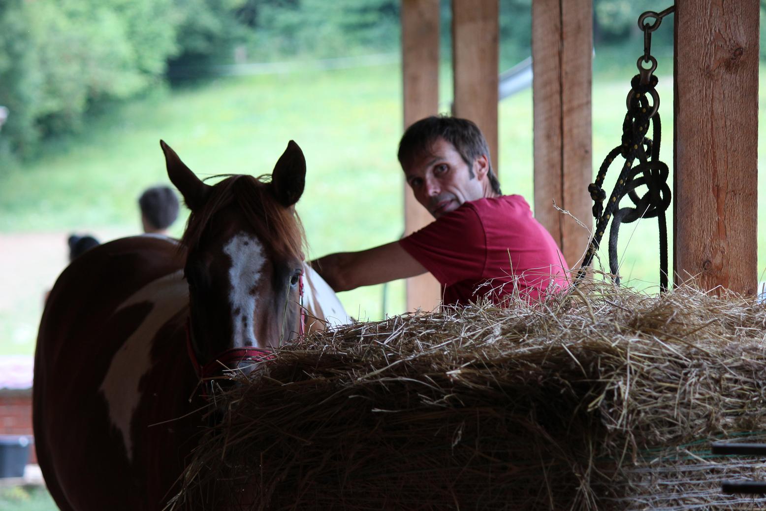 Proč vám kůň nerozumí