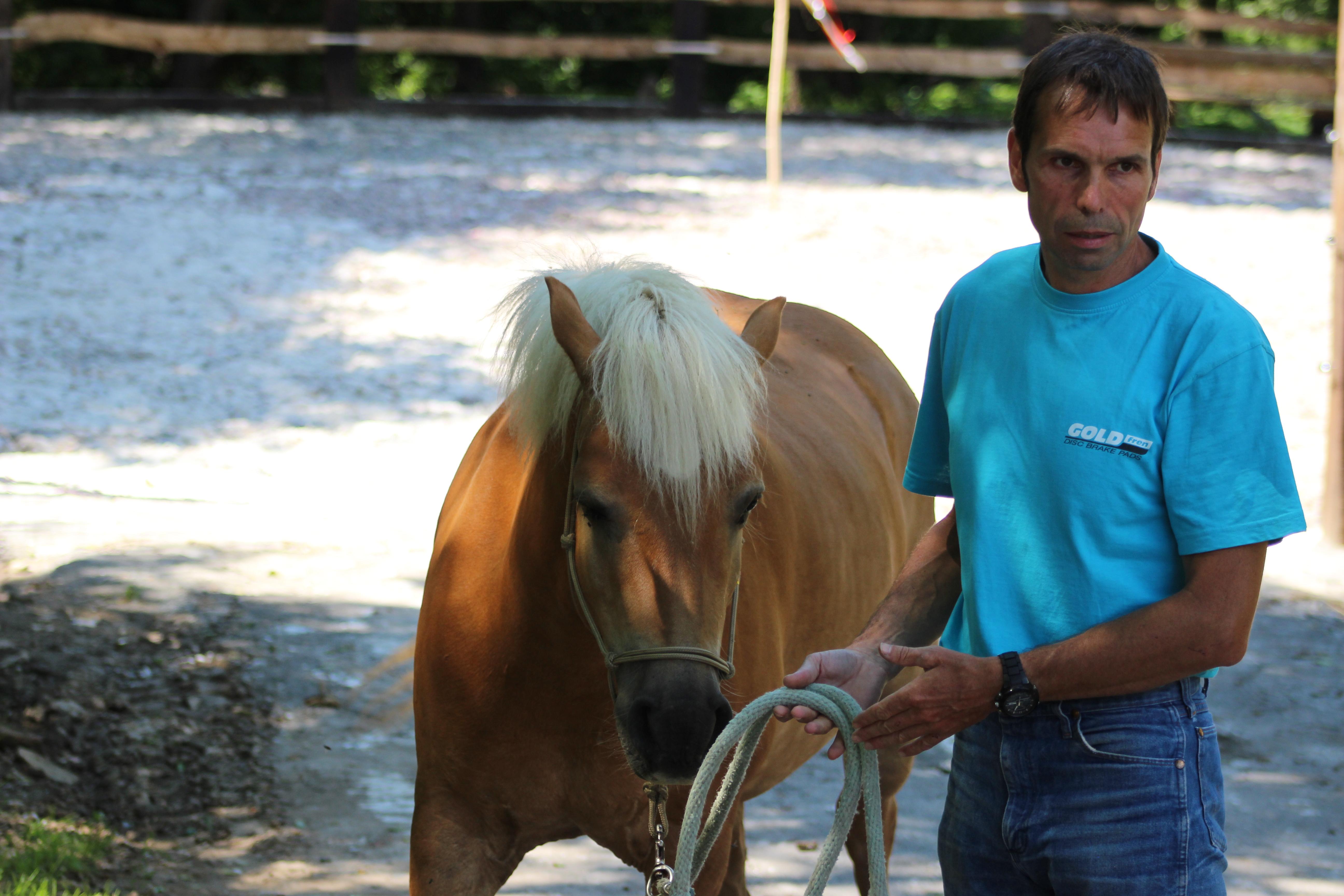 Víte proč lonžujete koně?
