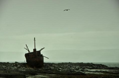 Die MV Plassey am einsamen Strand; pic by Phillipp