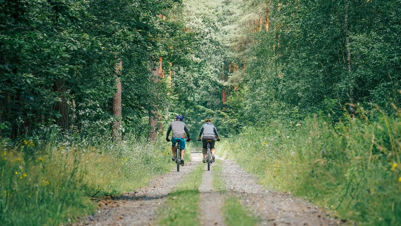 radfahrende im Wald