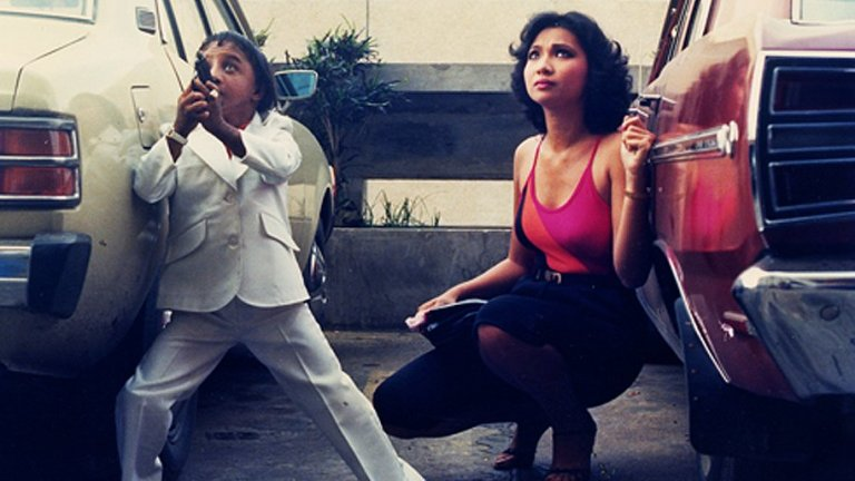 SCREEN DIARY: THE SEARCH FOR WENG WENG