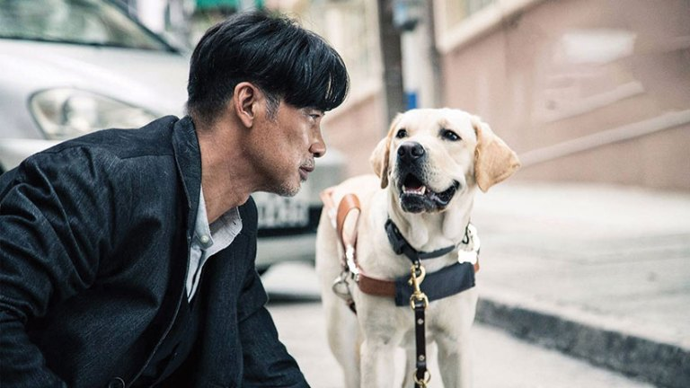 Films in London today: LITTLE Q, part of CHINESE NEW YEAR at BFI (19 JAN).